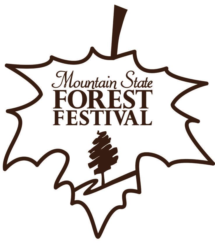 msff-2013-logo