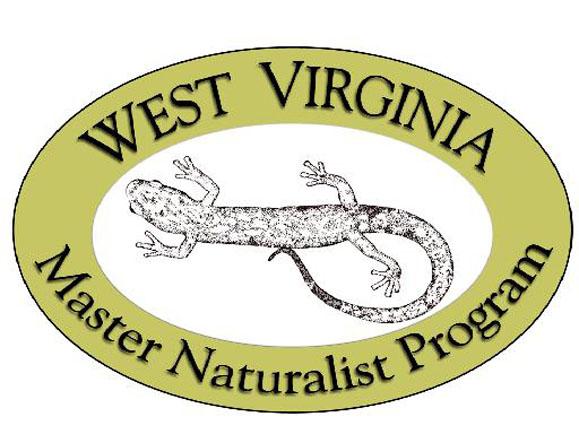 Naturalist logo