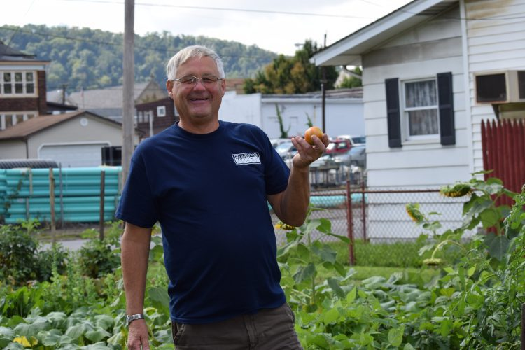 T-L Photos/SHELLEY HANSON MARTINS FERRY Councilman James Schramm holds up a tomato he picked at the Community Garden on Zane Highway. Cherry tomatoes are also some of the produce ready for harvest.