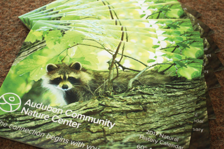 Photos submitted to Times Observer The Audubon Community Nature Center is celebrating its 60th anniversary with a natural history calendar that features stories of how wildlife has changed in the last 60 years as well as photos of staff, volunteers and visitors from the past.