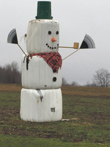 Photo submitted to Times Observer Jim and Vicki Stec's snowman, built with help from Carri and Lucas Stec.