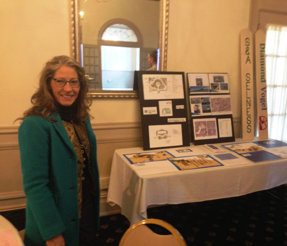 CONTRIBUTED PHOTO Marshalltown Parks and Recreation Director Anne Selness is seen in front of the display illustrating the upcoming MEGA-10 Park renovation. Selness described the project in a program to the Marshalltown Rotary Club.