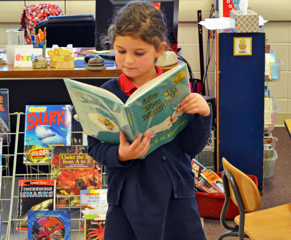 insightful kindergartner is kind to everybody news sports t r photo by sara heintz olivia walker 6 a kindergartner at st