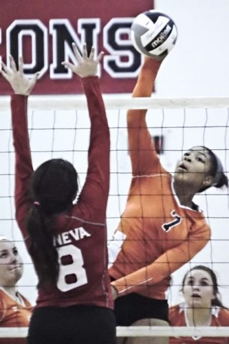 Tribune Chronicle / Bob Ettinger Faith Grant of Howland slams the ball at Megan Adams of Geneva in the Tigers' five-set victory in a Division II sectional win Tuesday at Jefferson.