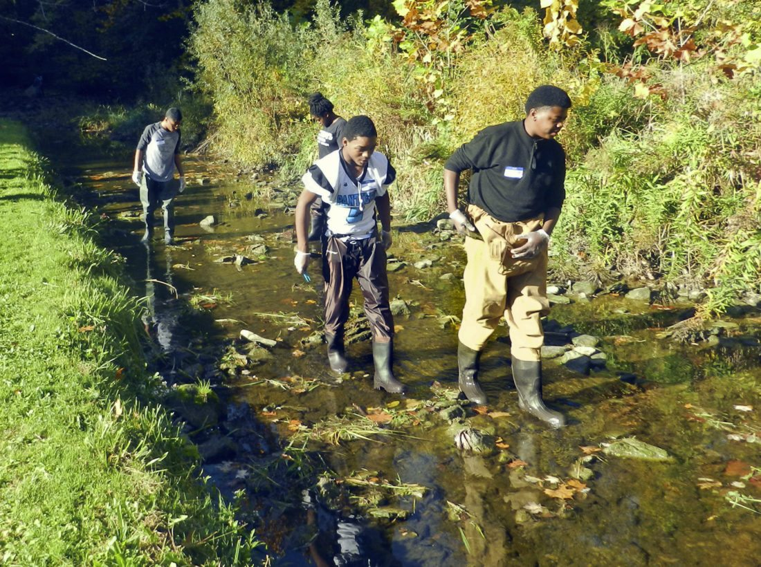 overview of the students searching the creek for wildlife in the environmental event at Mill Creek Park Wednesday morning.