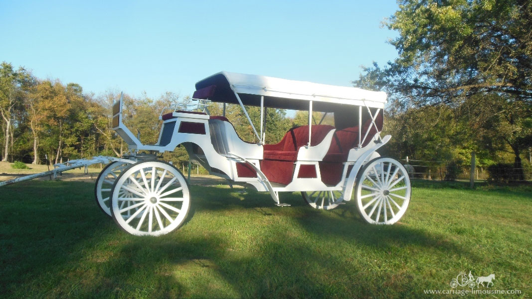 Carriage Limousine Service of Wellsville recently added a stretch Victorian carriage to its fleet. Carriages pulled by Percheron draft horses are available for weddings, funerals, proms, parades and other occasions. — Contributed