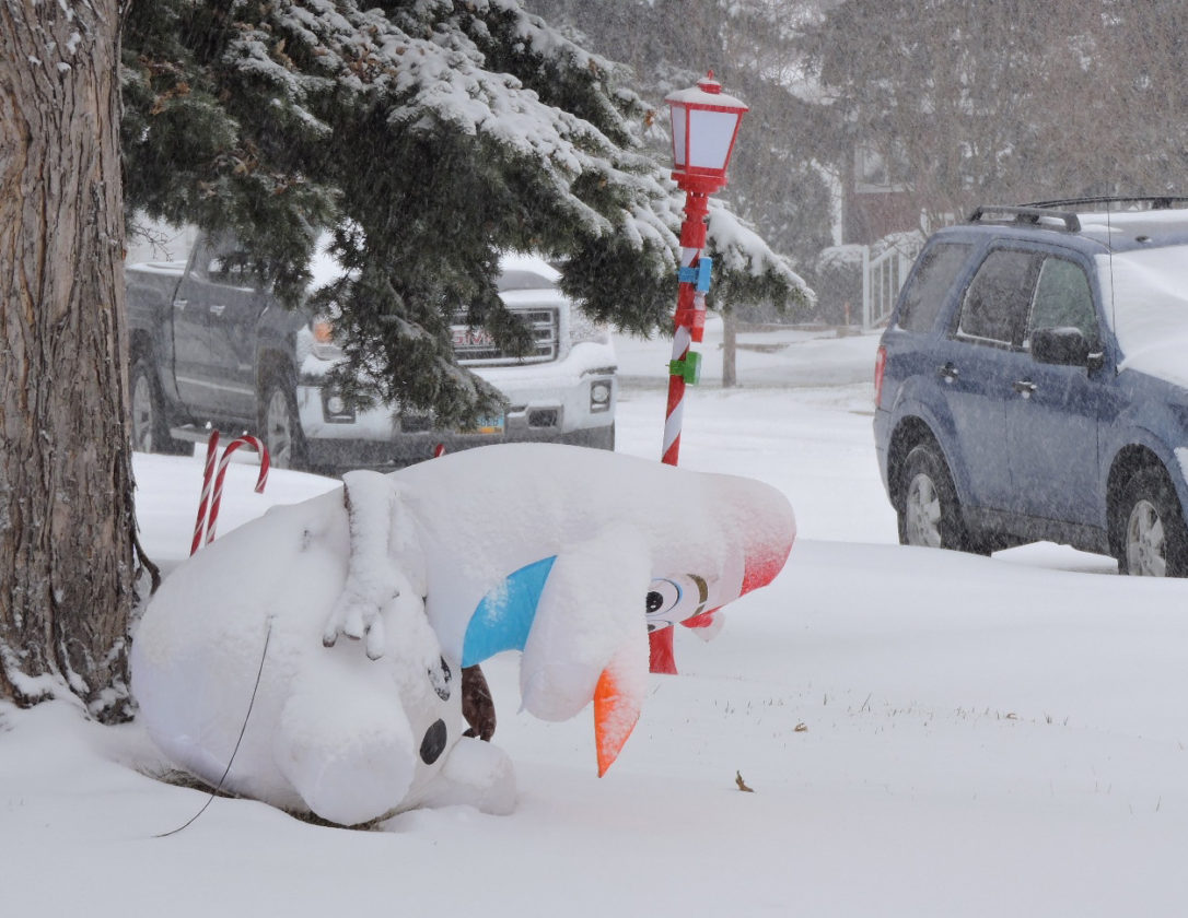 winter blast creates mixed emotions in minot news sports jobs kim fundingsland mdn minot s first snow storm of the winter season overpowers olaf