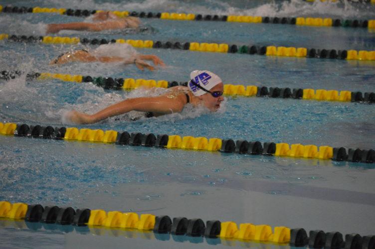 west virginia state swim meet results